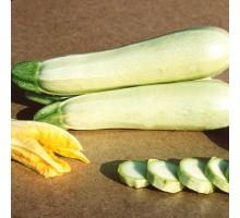 Семена Кабачка  — Сорт КАВИЛИ